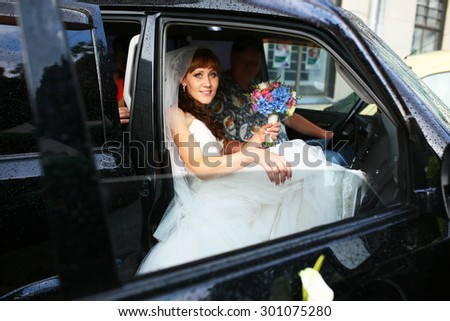 beautiful happy bride, stylish car, travel, lions, wedding celebration - stock photo