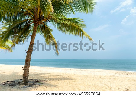 Beautiful holiday landscape, isolated coconut palm tree on a tropic beach.