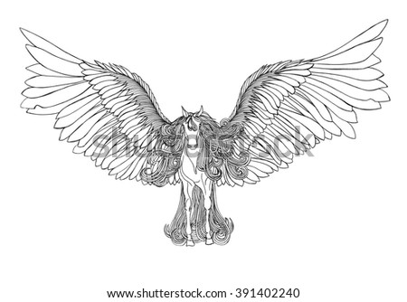 Beautiful Horse with mane and wings.Pegasus. Drawning by pen .Close-up