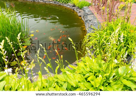 Fish pond stock images royalty free images vectors for Koi pond maker