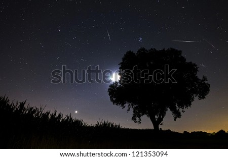 Beautiful image during the night of the Perseid meteor shower in the summer of 2012 in the Netherlands, showing a number of meteorites - stock photo