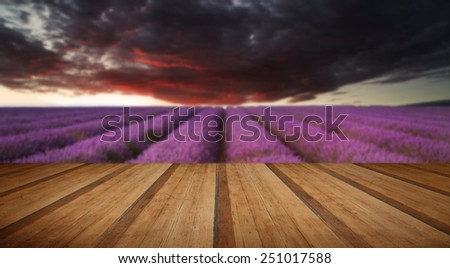 Beautiful image of lavender field Summer sunset landscape under red stormy sky with wooden planks floor - stock photo