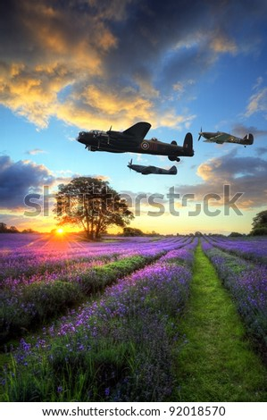 Beautiful image of stunning sunset with atmospheric clouds and sky over vibrant ripe lavender fields in English countryside landscape with World War 2 RAF airplanes flying overhead - stock photo