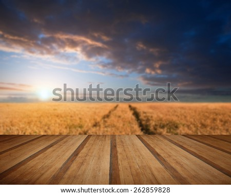 Beautiful image of wheat field Summer sunset landscape with wooden planks floor - stock photo