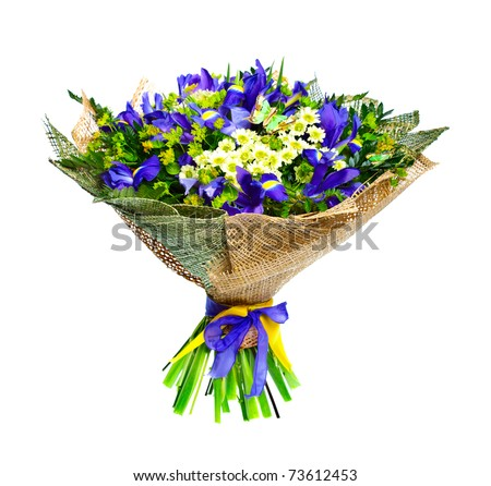 Beautiful irises and chrysanthemum isolated on white background