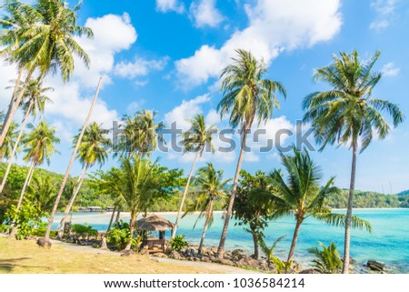 Beautiful island paradise with coconut palm tree around sea and beach on white cloud and blue sky - Holiday vacation concept