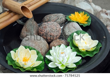 Beautiful Japanese water lilies flowers arrangement with a bamboo waterfall - stock photo