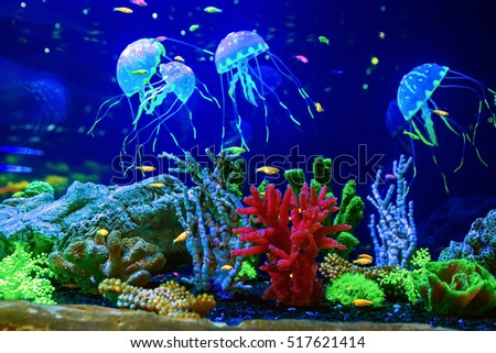 Medusa Stock Images Royalty Free Images Amp Vectors