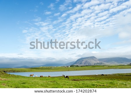 Beautiful lake against mountain background, Iceland, good summer weather - stock photo