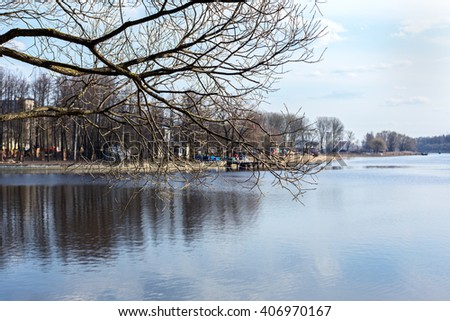 Beautiful  lake seen through the trees. Selective focus on the trees branches