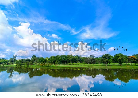 Beautiful lake with green tree - stock photo