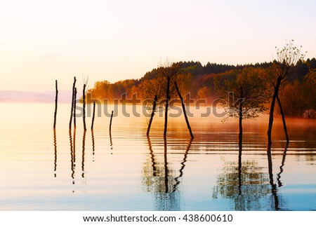 beautiful lake with mountains in the background at sunrise. Trees in water and morning fog - stock photo