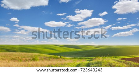 beautiful landscape. bright green field under a sky with clouds. summer