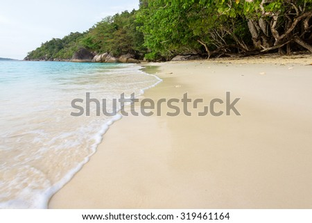 Beautiful landscape clear water sea with small waves on the sandy beach at Honeymoon Bay during sunrise in Koh Miang Island, Mu Ko Similan National Park, Phang Nga, Thailand