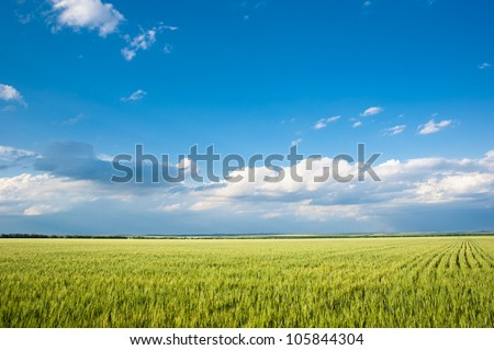 beautiful landscape. field and clouds - stock photo