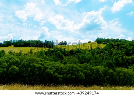 Beautiful landscape, green meadow and trees with beautiful sky. - stock photo