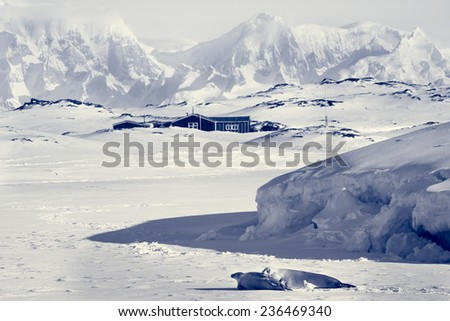 Beautiful landscape in  Antarctica - stock photo