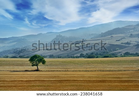 beautiful landscape in Italian countryside with hills and mountains on background, Apulia, Italy - stock photo