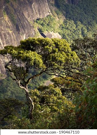 Beautiful landscape in the mountains of Sri Lanka - stock photo