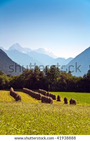 beautiful landscape in the tirolean Alps, good smelling grass and wonderful mountains