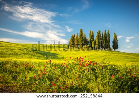 Beautiful landscape in Tuscany, Italy - stock photo