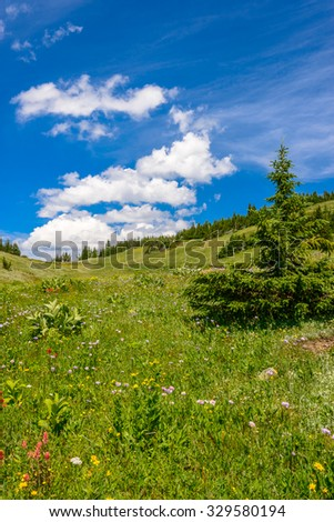 Beautiful landscape of valley in Alpine mountains, small trail, hike root, majestic picturesque view in sunny day - stock photo