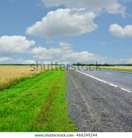 Beautiful landscape of wheat field, road on the background of stunning blue sky with amazing cumulus clouds. Wonderful panoramic view. Countryside in summer. Rye. Country roads. Picturesque wallpaper