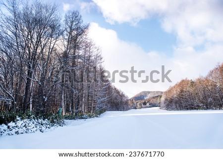 Beautiful landscape of winter - stock photo