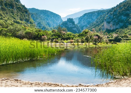 Beautiful landscape on the lake coast with flowers, green grass and mountains on background - stock photo