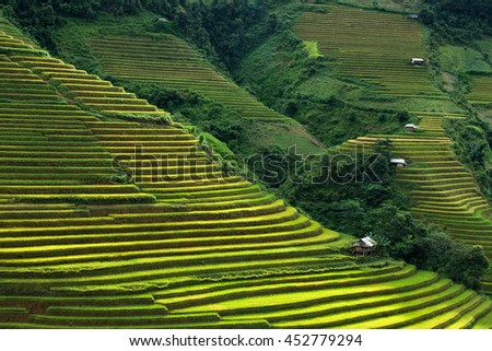 beautiful landscape rice terrace view in hmong village at la pan tan mountain , mu cang chai , yen bai , vietnam