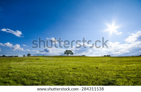 beautiful landscape with a lone tree, clouds and blue sky, natural colors - stock photo