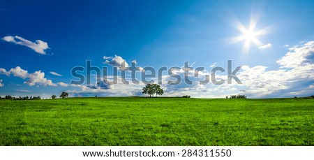 beautiful landscape with a lone tree, clouds and blue sky, saturated colors - stock photo