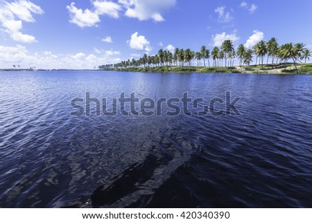 beautiful landscape with coconut palms on the coast of Costa do Sauipe in Bahia Brazil - stock photo