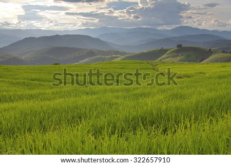 Beautiful landscape with colorful, light and shadow during sunset of the rice terraces(paddy field) and mountains at Mae-Jam Village , Chaingmai Province in Thailand - stock photo