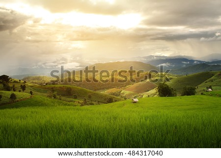Beautiful landscape with colorful, light and shadow during sunset of the rice terraces(paddy field) and mountains at Mae-Jam Village , Chaingmai Province in Thailand