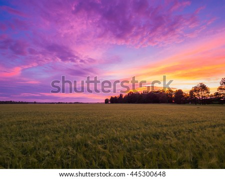 Beautiful landscape with field and a silhouttes of trees during magnificent sunset. Toila, Estonia. - stock photo