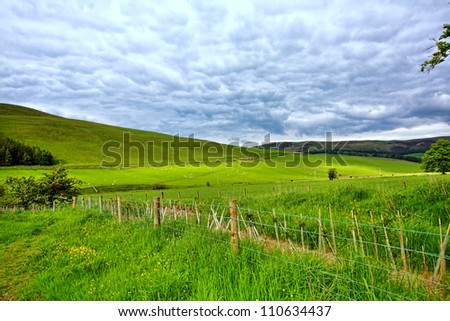 Beautiful landscape with fields in Springtime in Scotland