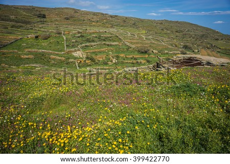 Beautiful landscape with fields, mountains and flowers at Tinos, Greece