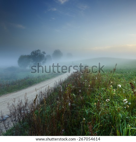 Beautiful Landscape With Fog And Country Road In North Poland/ Misty Road - stock photo
