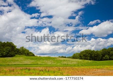 Beautiful landscape with green grass and blue sky with clouds - stock photo