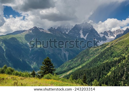 Beautiful landscape with mountain peaks and meadows