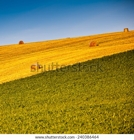 Beautiful landscape with straw bales - stock photo