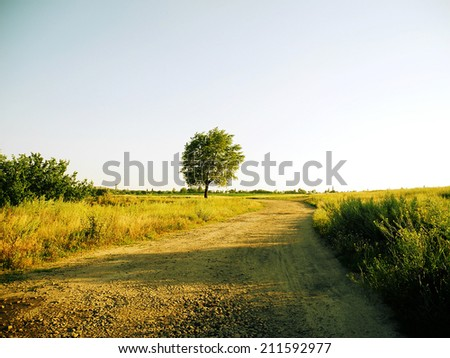Beautiful landscape with tree and blue sky