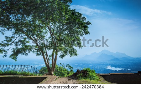 Beautiful lanscape - mountains  in summer sunny day  - stock photo