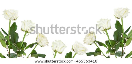 beautiful light color roses half frame isolated on white background