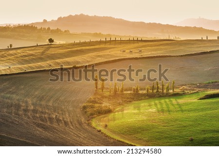 Beautiful light of the morning sun in the Tuscan landscape
