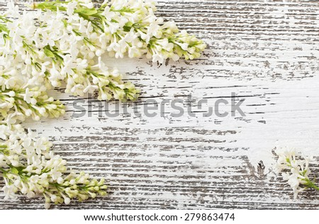 beautiful lilac on a white wooden background - stock photo