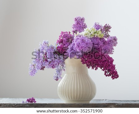 beautiful lilac on white background