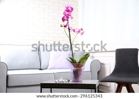 Beautiful lilac orchid in pot on table in room