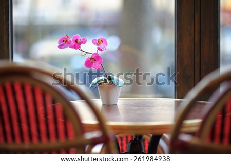 Beautiful lilac orchid in the white pot on the table in european cafe - stock photo